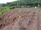 深圳周边区梅州18000方土地出售