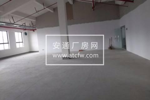 松江九亭盛龙路2800平厂房出租