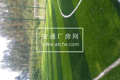 顺义区京承高速边12000方土地出租
