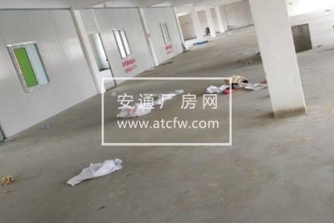 黄岩区澄江工业区940方仓库出租