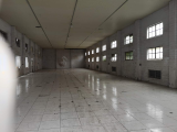 闵行区1300方独栋厂房出租