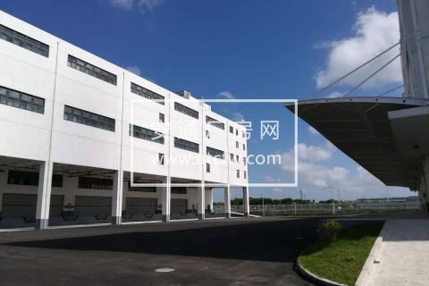 浦东机场附近3万平丙一类仓库出租(房东)