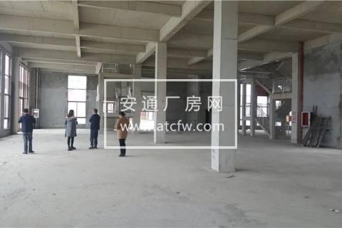 全新独立产权厂房可独栋可分层600到15000方 江门顺德高明均有售