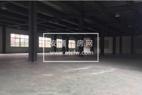 松江泗泾底楼层高8米4000平仓库出租