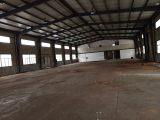 庄市1500方一楼钢架结构厂房出租