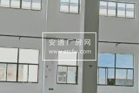 单层1900平优质厂房对外招商