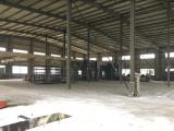 杭州临平余杭经济开发区1800方单层厂房出租
