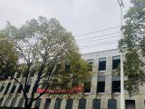 江北新区  CBD核心区域 花园式标准厂房 管委会旁