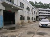 光明新区南光高速塘明出口一公里2240方厂房出租