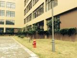 鹿城轻工产业园区沈湾路29号4220方厂房出租