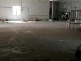 张家港区鹿苑金桥路1170方厂房出租