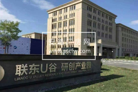 津南区睿科道与慧科路交口1160方厂房出售