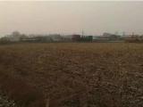 双城区新兴附近2000方土地出售