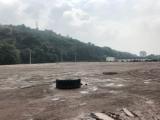 九龙坡区白市驿三角碑30000方土地出租