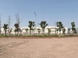 沙坪坝区重庆西部现代物流园区5000方土地出租