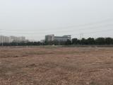 余杭区良渚街道40000方土地出租