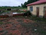 香坊区柳树林村2000方土地出售