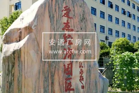 出租奉贤四团办公科研厂房仓库104地块近临港大团