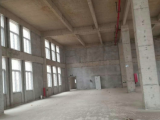 栖霞区新港开发区1647方厂房出售