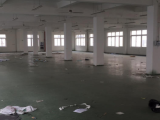 海曙区宁波望春工业园区1250方厂房出租