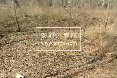 朝阳县区北沟门子乡100000方土地出售