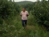 阿城区北大门南山240000方土地出售