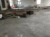 慈溪区观海卫镇800方厂房出租