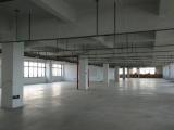 瑞安南滨街道阁巷工业园12000方厂房出租