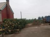 辽中区8600方土地出售