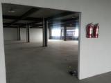 萧山区550方厂房出租