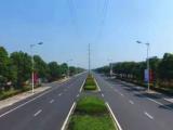 南京周边滁州市来安县333000方土地出售