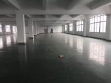 奉贤区奉贤德胜路252号(团青公路口)20000方厂房出租
