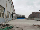 宝山区月川路蕰川路7500方仓库出租