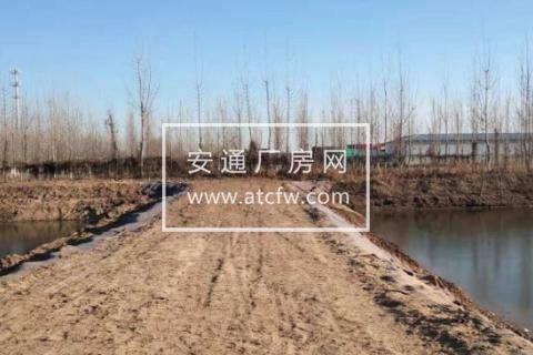 沧州东高速口4000方土地出租