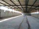 牡丹区淮河路与上海路交叉口向南1000方仓库出租
