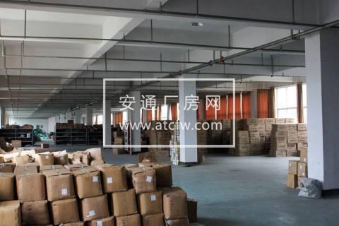 出租仓前工业园底层1800方带喷淋标准厂房