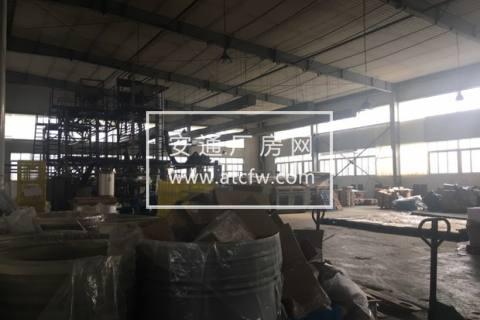 出租余杭闲林5200方单层钢架厂房