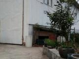 信州区朝阳镇十里村600方仓库出租