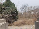 灞桥区G310(连天线)3675方土地出租
