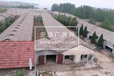 赣榆区塔山镇青班线15000方厂房出售