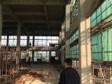 阿尔法产业园全新厂房 低至2950元/㎡ 19年9月交付 独栋户型