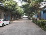 江阴区祝陆路6号对面8000方厂房出租