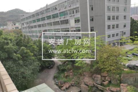 龙华新区3600000方土地出售