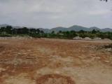 罗定区两塘镇高速出口附近7500方土地出租