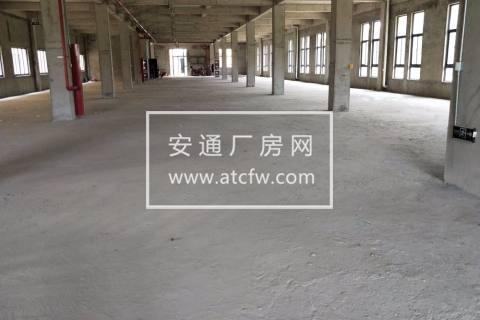 A江宁禄口5000方 标准厂房 主干道旁