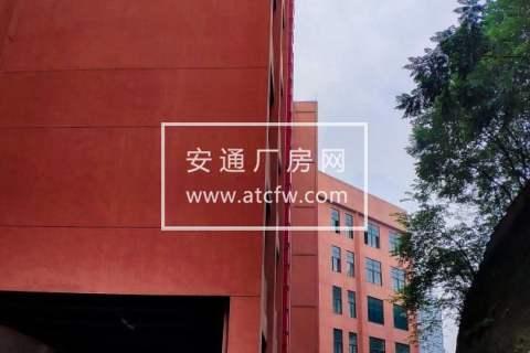 九龙坡西部物贸中心10000方仓库出租