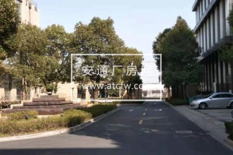 松江区松闵路/申港路890方厂房出售