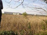 上虞杭州湾工业园区100亩2类工业用地 25万一亩低税收指标(可分割)