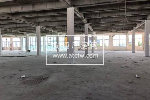 黄埭 一楼1600方  优质厂房出租