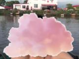道外区民主镇红星村5800方仓库出售